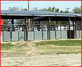 Texas Arenas M C Diamond Ranch