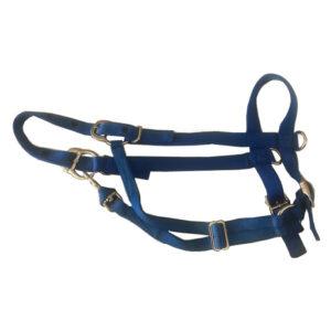 Original Parker Nylon Halters Royal Blue H17RB